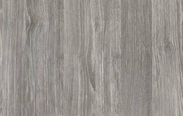 dub sivý